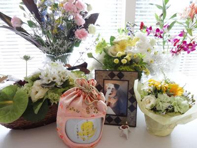 130605_flower.jpg