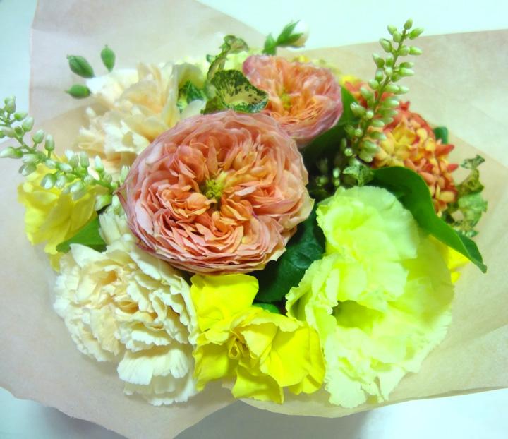 http://syuna-bani.net/blog/140525_ohana.jpg