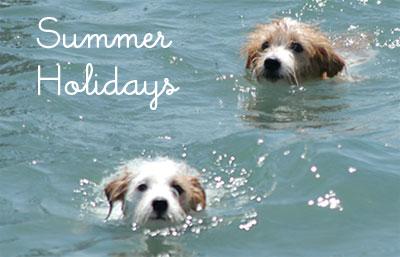 2013_summer_holidays.jpg