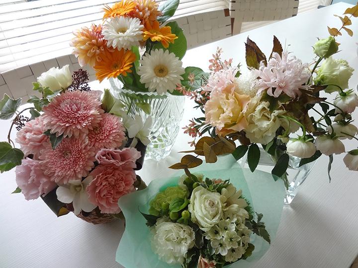 http://syuna-bani.net/blog/DSC09523.jpg