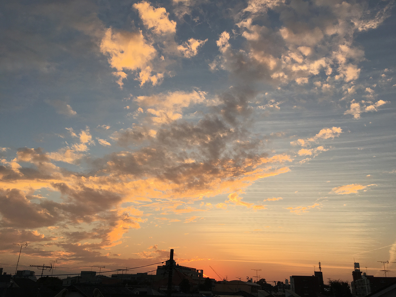 http://syuna-bani.net/blog/IMG_4889.jpg