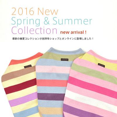 2016_SS_online.jpg