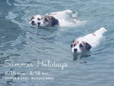 2016_summer_holidays.jpg