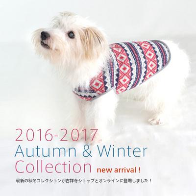 201611101_00.jpg