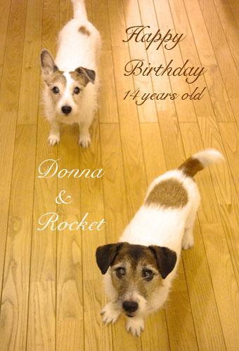 donna&rocket.jpg