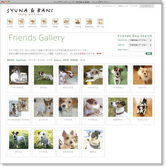 friends_dog_search2.jpg