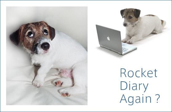 rocket_diary_again2.jpg
