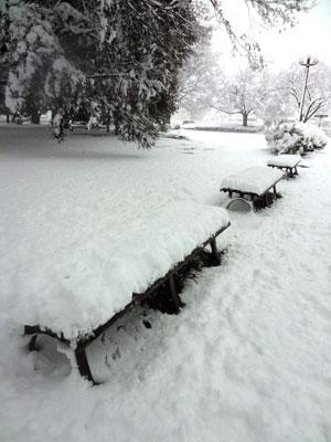 snow02.jpg